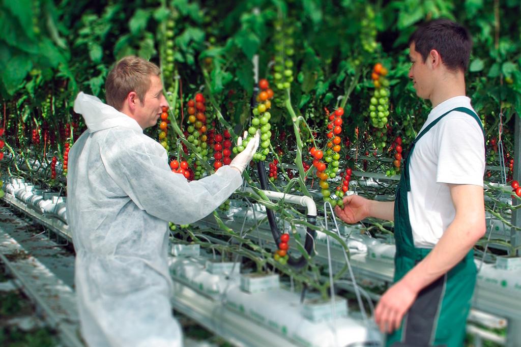 BIO Pflanzenschutz