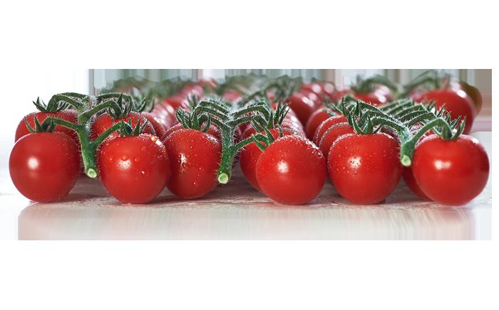 Cherrycocktailtomaten
